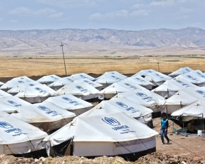 CHEP supports United Nations High Commissioner for Refugees (UNHCR)