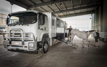 Sydney Horse Transport relies on Allison Transmission's smooth ride pedigree
